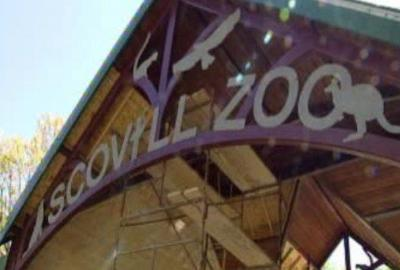 Scovill Zoo holding Zoo Buddies classes