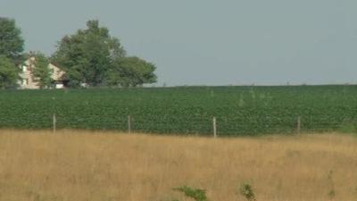 Follow the Farmstead offering a glimpse into central Illinois farms