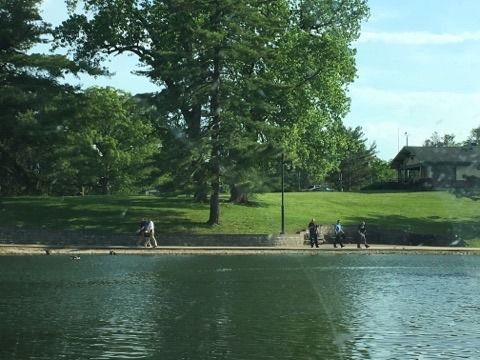 Picnic in the Park being held in Decatur | Top Stories