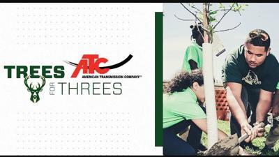 Trees for Threes returns for 6th season