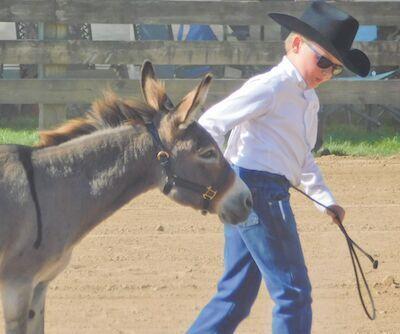Levi and Buddy the doinkey