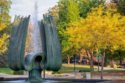 Fall - Marshall University-4.jpg