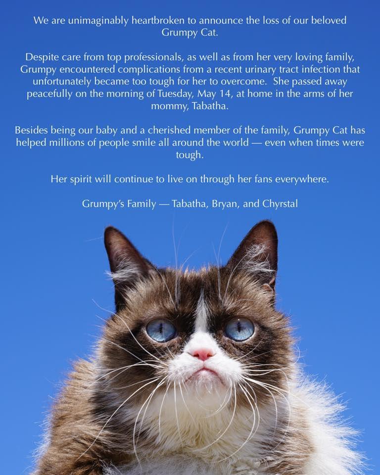 Grumpy Cat OBIT