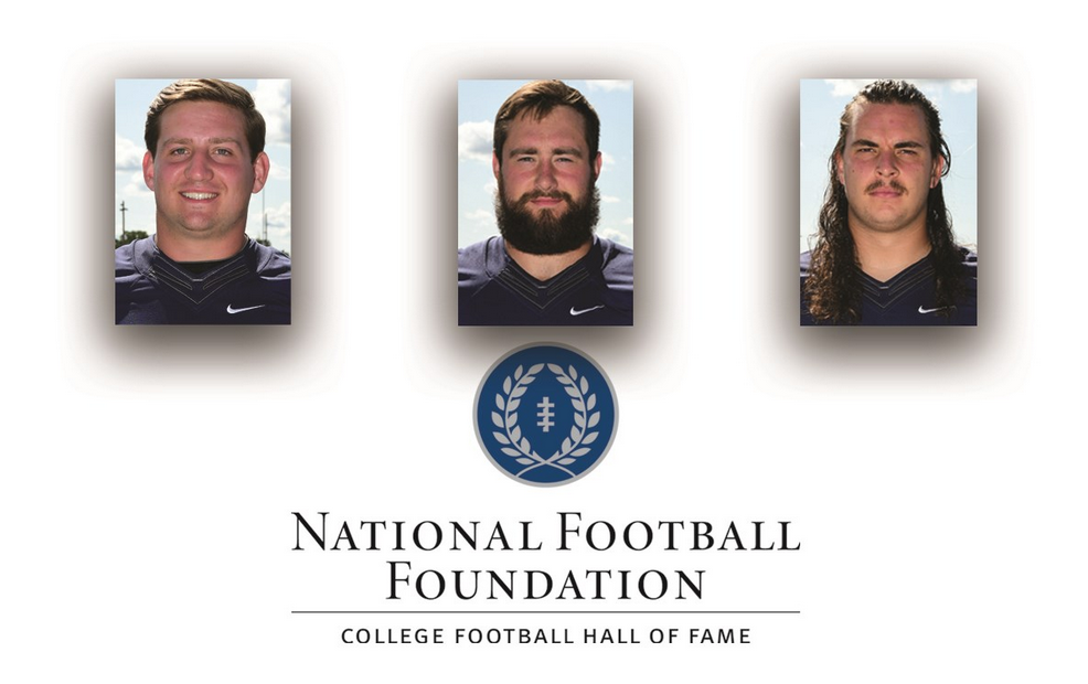 Football: Three Titans Named on the National Football Foundation Hampshire Honor Society