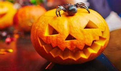 pumpkin carving-jack-o-lantern