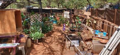 Hawaiian houseless village
