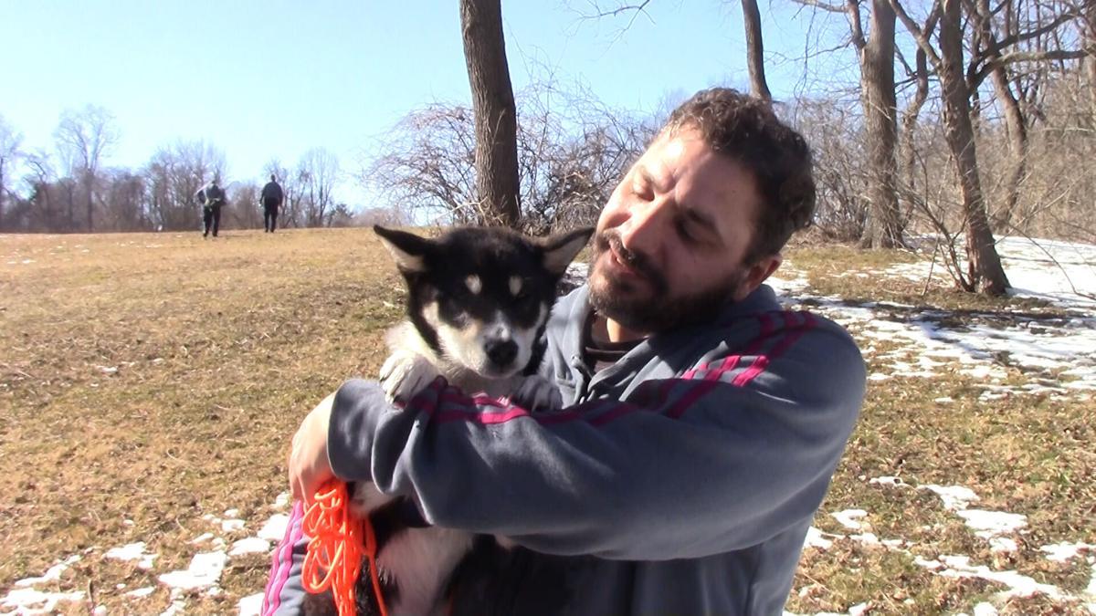 Dog ice rescue 1