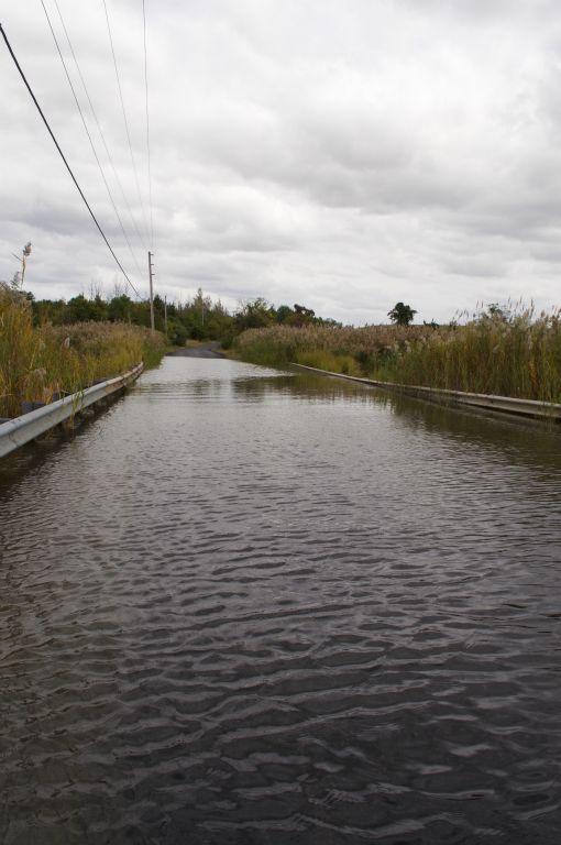 Old Corbitt Road Flooding