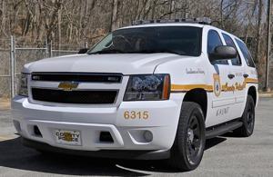 Police investigating Belvedere-area murder