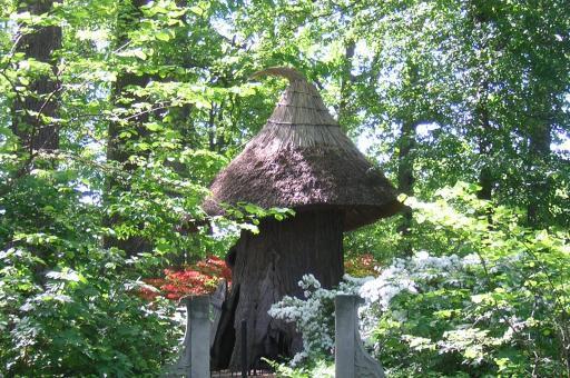 4-30Tulip-tree-House-in-Enchanted-Woods.jpg
