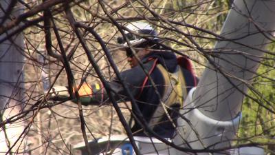 VIDEO | All in a day's work: Delmarva Power crews battle