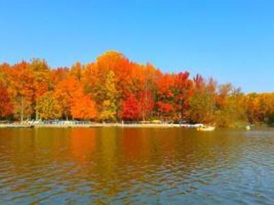 Lums Pond fall foliage