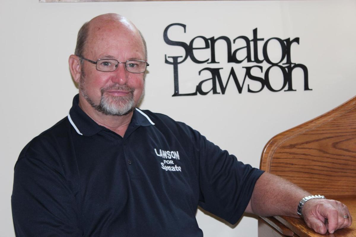 Image result for senator dave lawson