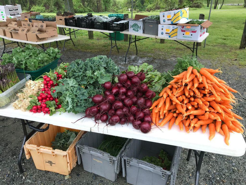 NCCo Farmers Market 1
