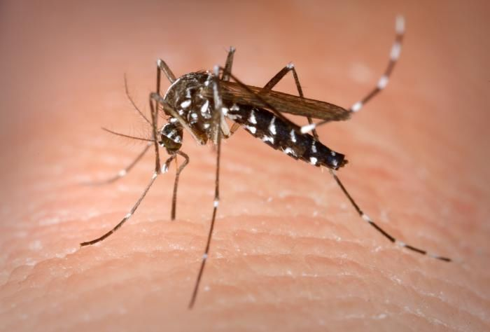 3 new West Nile Virus cases reported in Mississippi