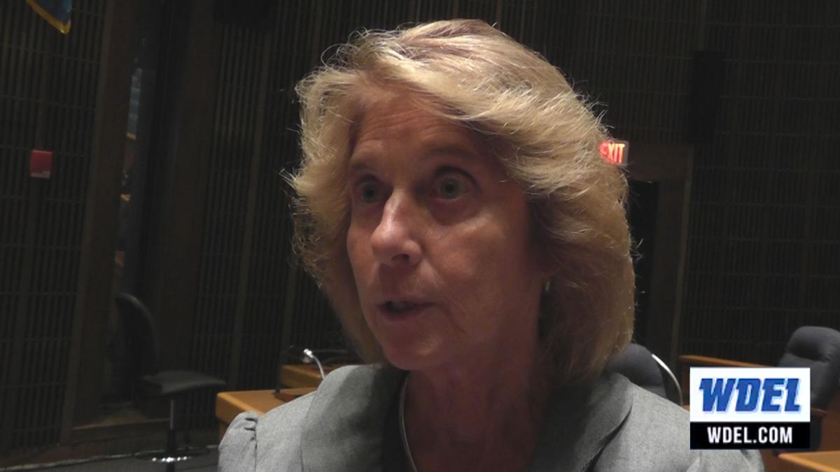 Kilpatrick: New Castle County political appointees shouldn't be included in merit system