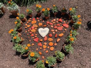 New garden in honor of survivors of gun violence dedicated in Wilmington