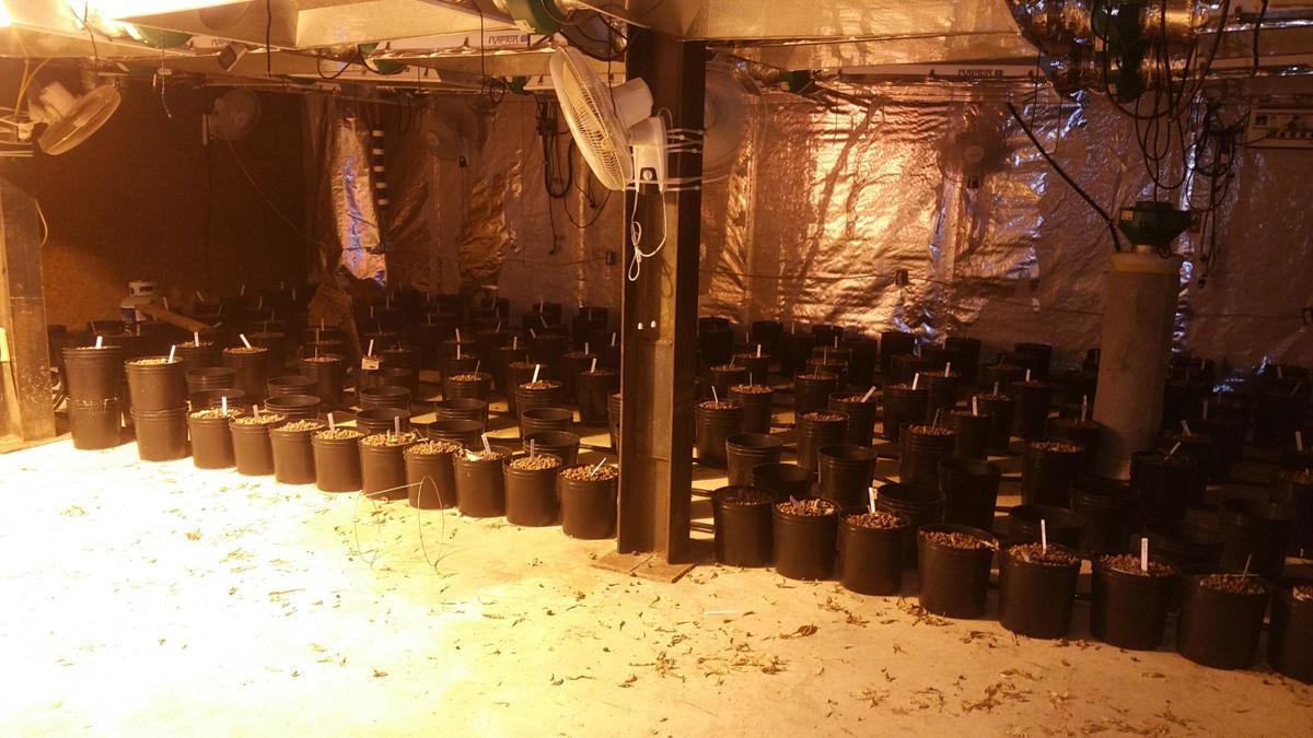 VIDEO | Not your average drug bust: Federal agents find drug tunnel