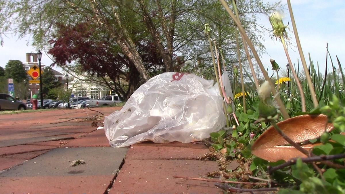 Delaware's plastic bag ban and what it means for you | The