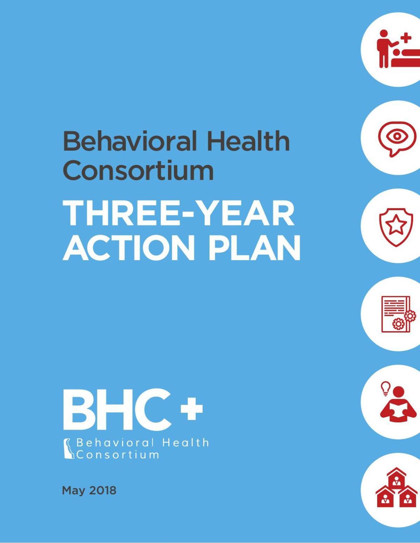 Delaware Behavioral Health Consortium Action Plan