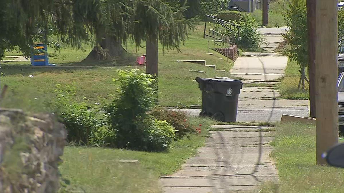 Sidewalk in the Shawnee neighborhood