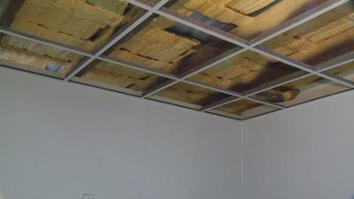Leaky roof and mold threatening Bullitt County Animal Shelter