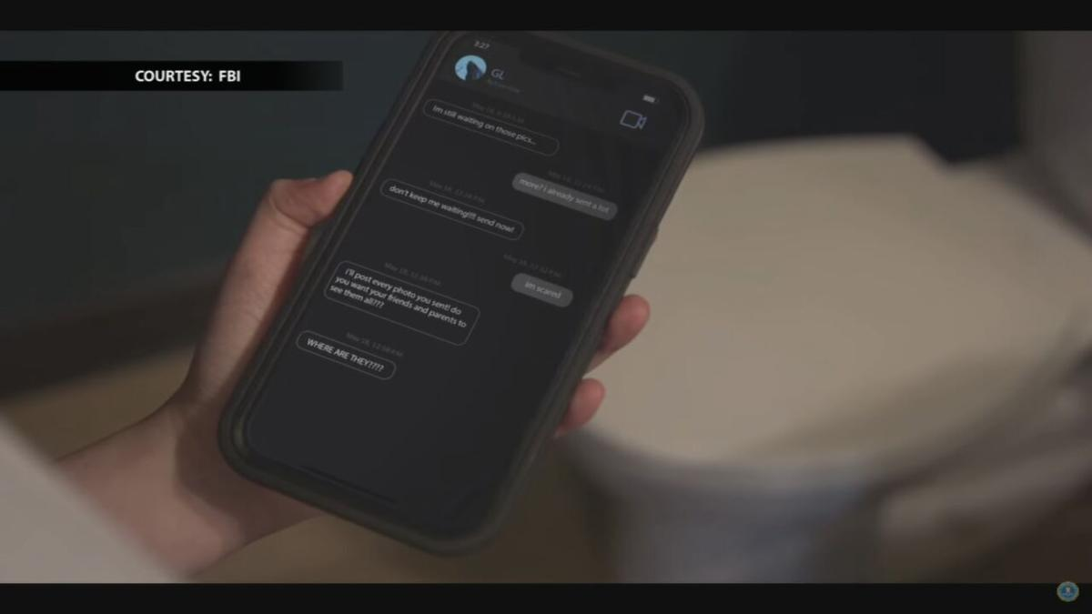 Sexual predator text messages.jpeg