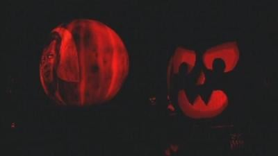 Discount available for Jack O'Lantern Spectacular on Nov. 1 with library cards
