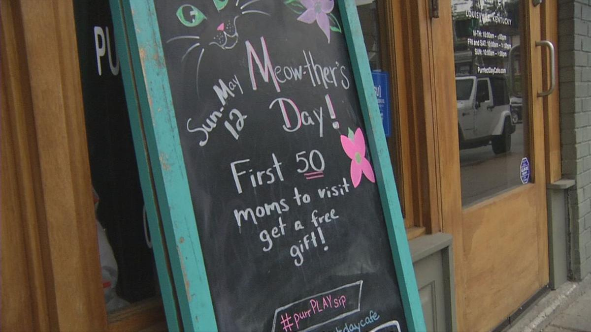 raw CAT CAFE MOTHER'S DAY SIGN 5-12-19.jpg