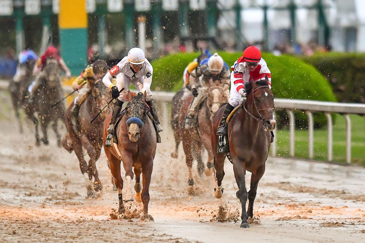 Crawford Omaha Beach Claims Top Spot In Latest Kentucky