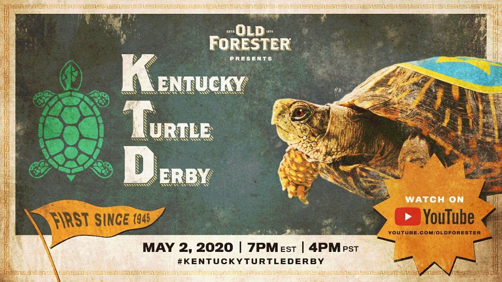 KENTUCKY TURTLE DERBY - AP FILE 2.jpeg
