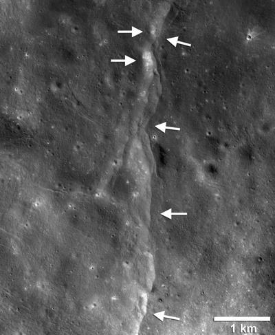 Evidence of Thrust Faults on the Moon