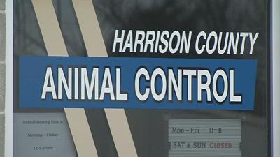 Harrison County animal shelter sign