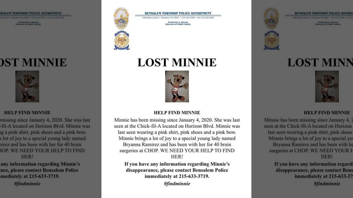 Lost Minnie Flyer