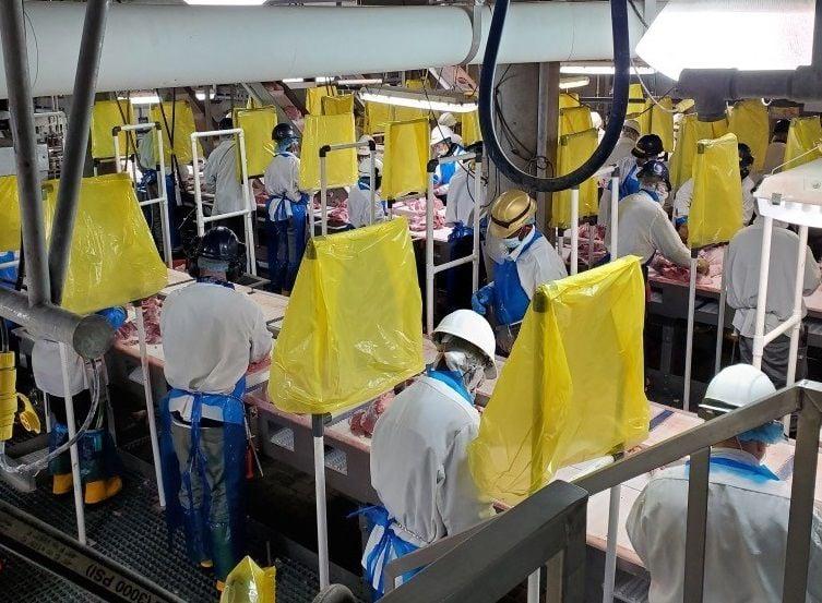 JBS pork plant interior company photo