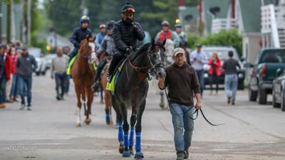 Meet The 2019 Kentucky Derby Horses Roadster Meet The