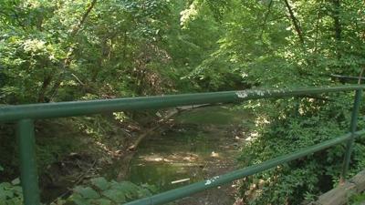 Hundreds of dead fish found in Beargrass Creek near Joe Creason Park
