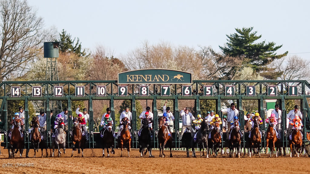 Crawford Vekoma Books Trainer S Derby Homecoming With