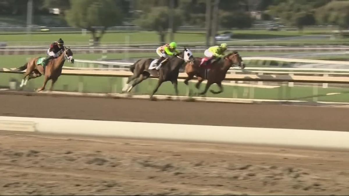 Horseracing at Santa Anita track
