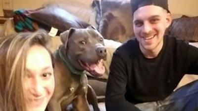 Rex Pitt Bull with owners Elana Greenfield and Dominic Primerano