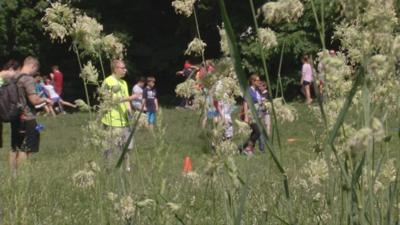 Tall grass at Tyler Park threatens field day for Louisville students