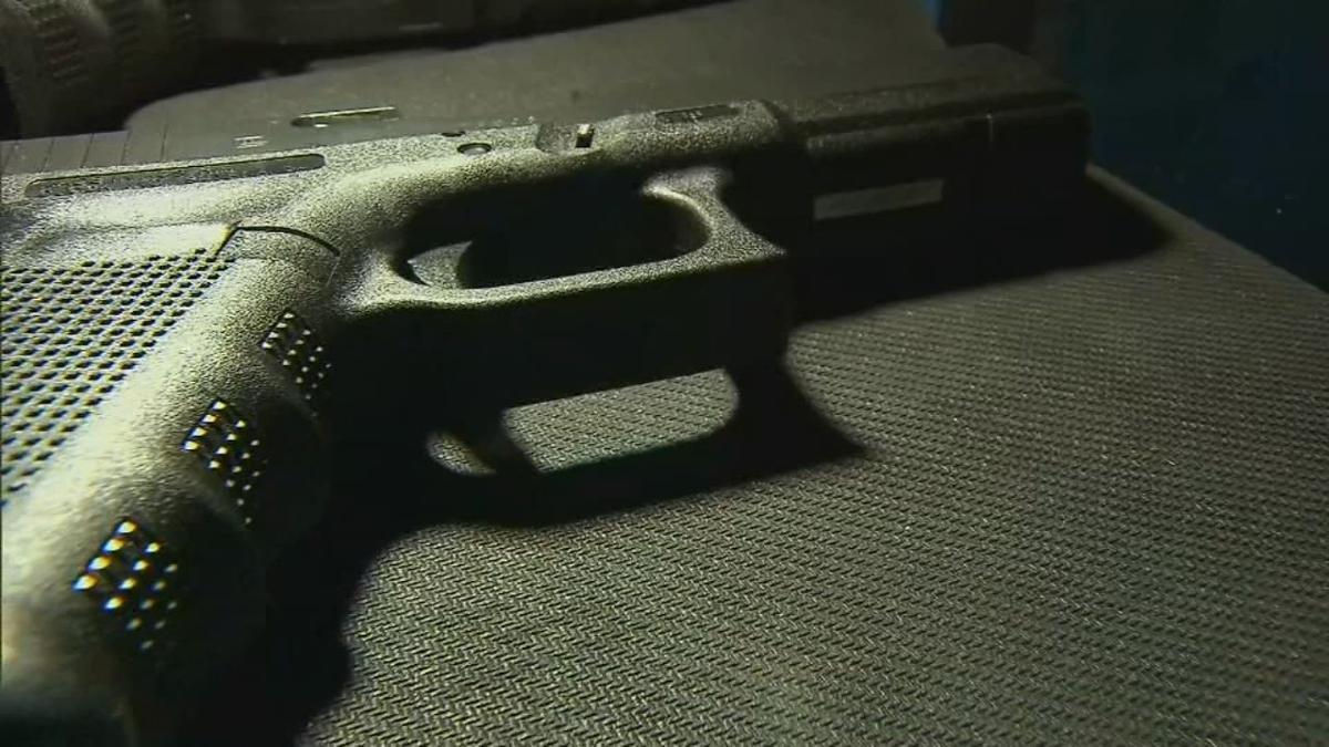 Handgun (generic)