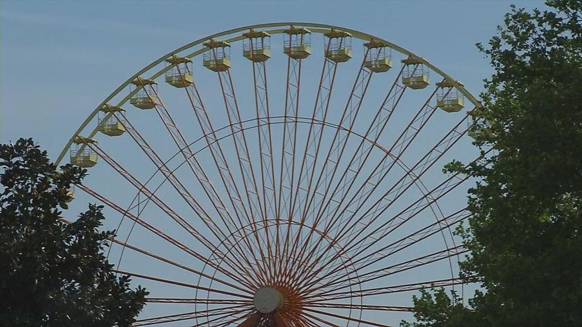 Kentucky Kingdom ferris wheel.jpeg