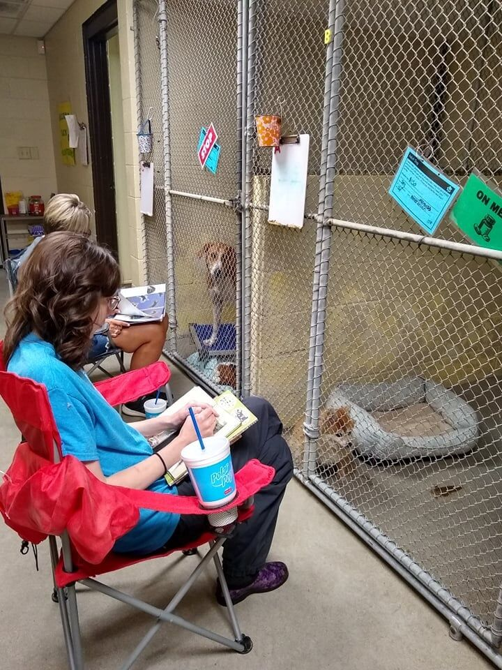 KHS-Volunteers read to animals during 4th of July-FB post-5.jpg