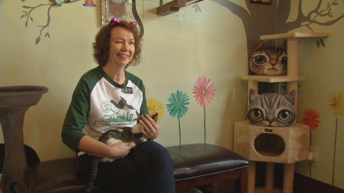 Karla Spencer, owner of the Lucky Cat Cafe & Lounge