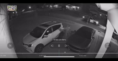 Shelbyville theft from vehicles