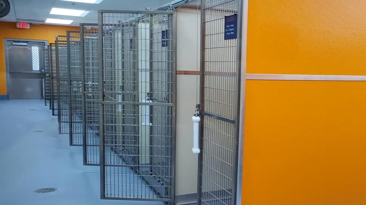 LMAS New shelter update 1.jpg