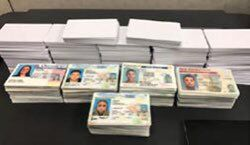More than 200 fake IDs seized at Louisville Mail Facility, U.S. Customs and Border Control says