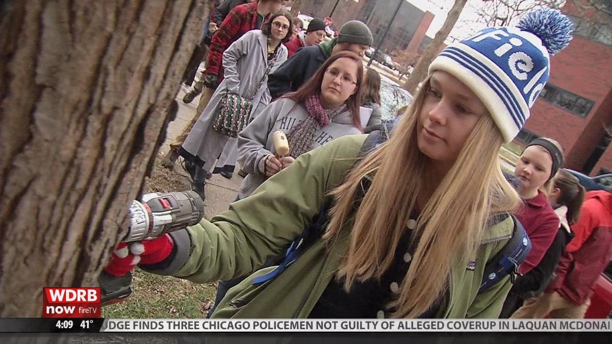 U of L students connect with the environment during maple tree tapping workshop