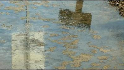 Raw sewage continues to spill into a Bullitt County waterway